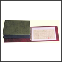 Family History Deluxe Long Foolscap Certificate Binder Starter Package - Green